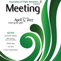 DEN LEC9 Meeting: 04.05.17